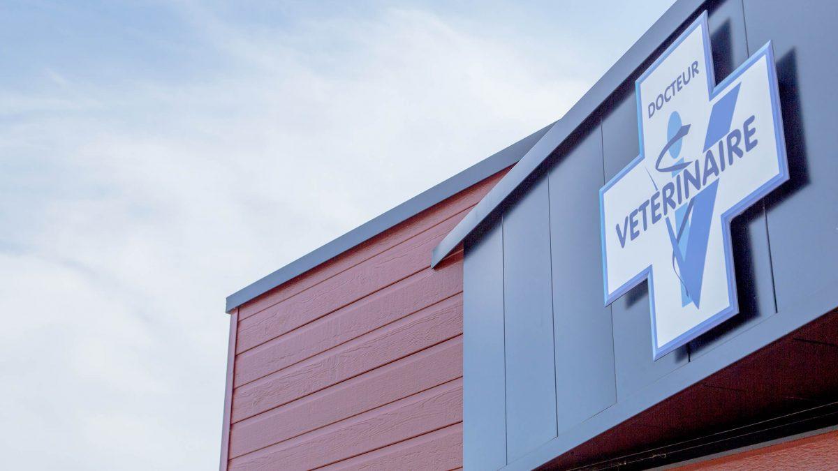 Clinique vétérinaire construction